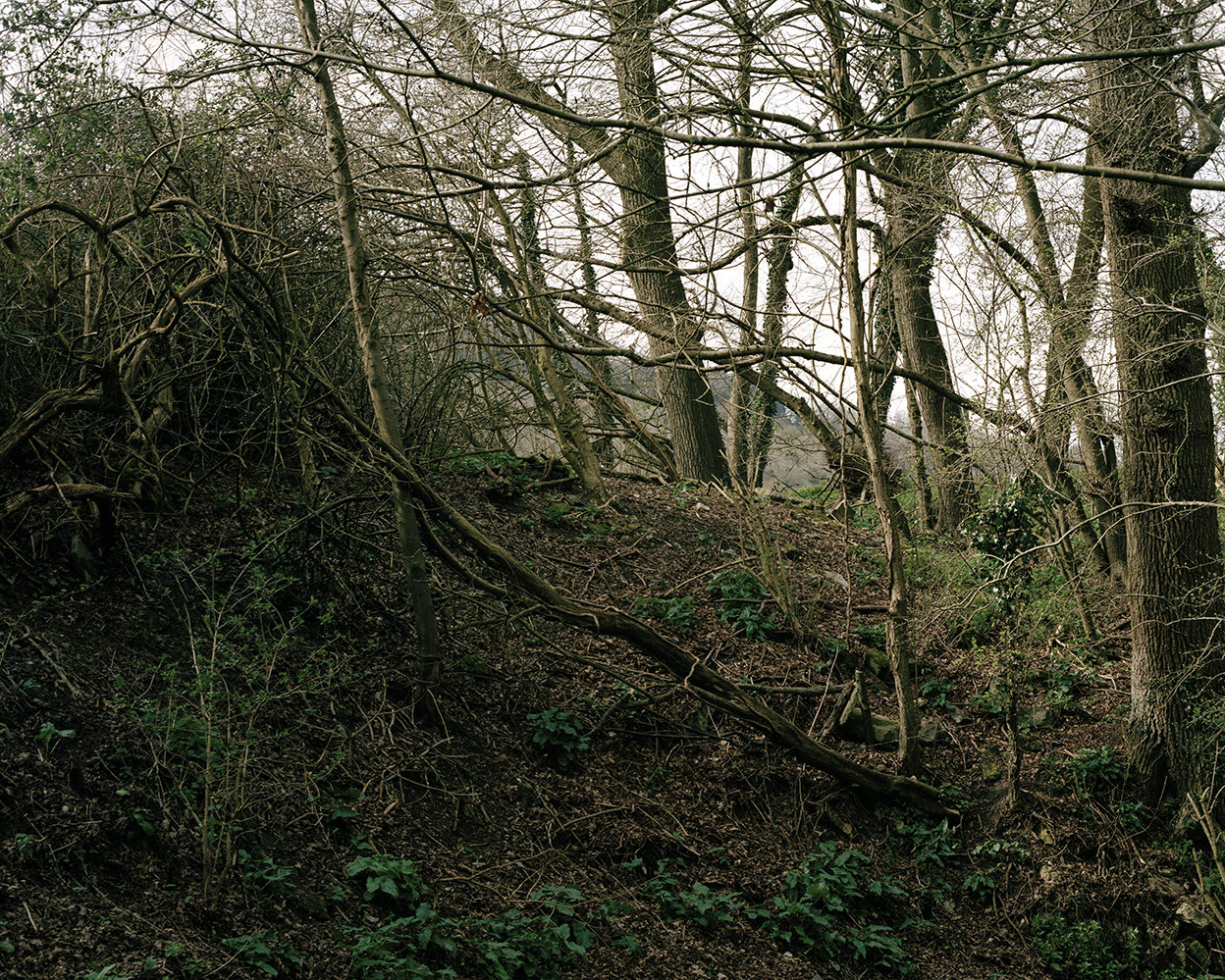 Image from the series  River  by  Ella Cousins