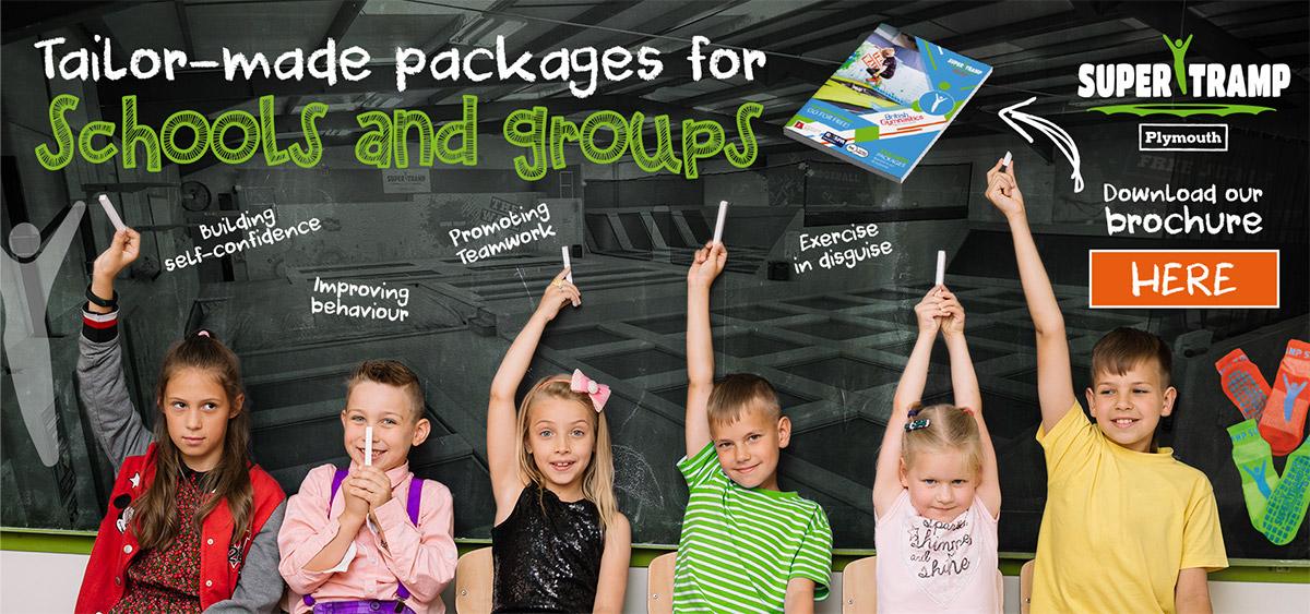 Schools-groups-header-STP.jpg