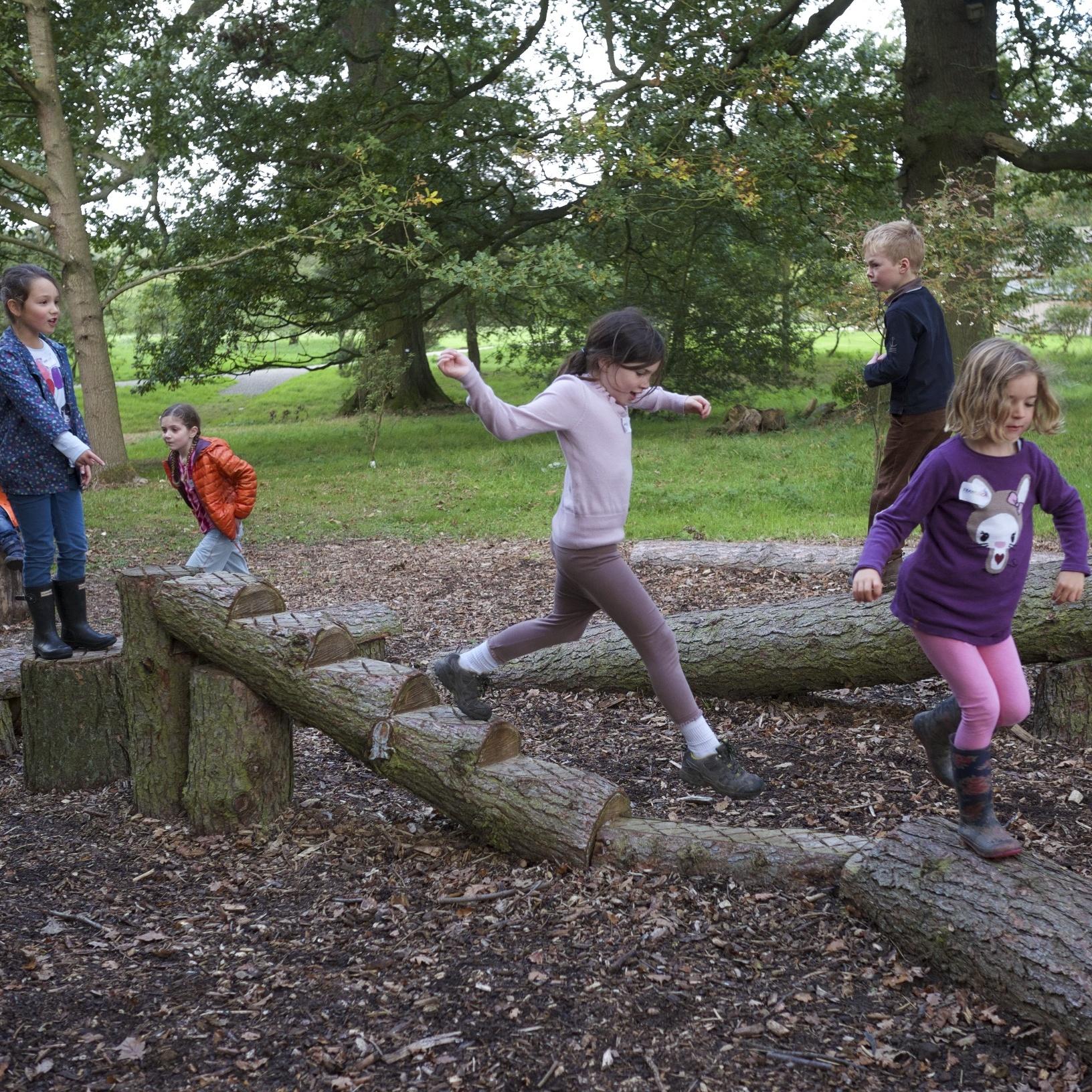 Yorkshire Arboretum - Woodland Playground sq.jpg
