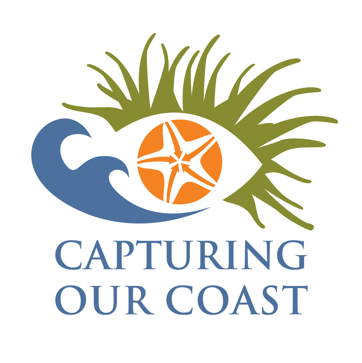 Inspiration:Place-based coastal project with 7 hubs. Experts provide training and volunteers can go out to capture data using different tools around the UK.