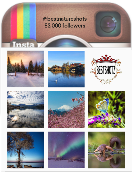 Inspiration: instagram competition.Individuals tag their photos, the account chooses winners and invites other users to congratulate them.