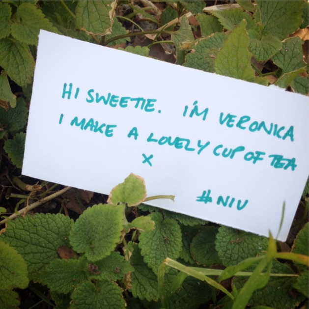Idea: Love letters from nature are left for unsuspecting members of public to find. Your secret admirer might be closer than you think.