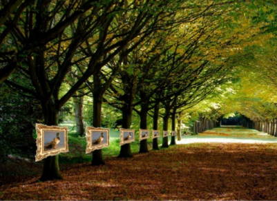 Idea: Natural photographer.An exhibition of nature photos, shot by amateur photographers, displayed in a park.