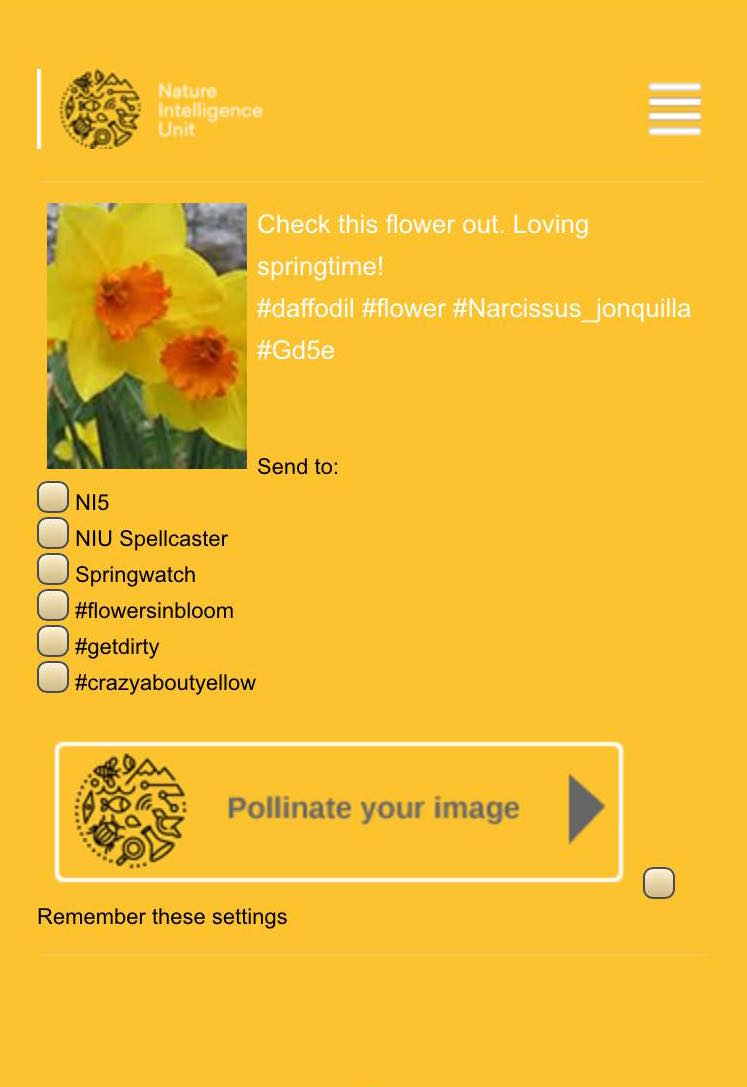 Idea: Picture pollinator.A way to turn every day posts about nature on social media into useful scientific data.