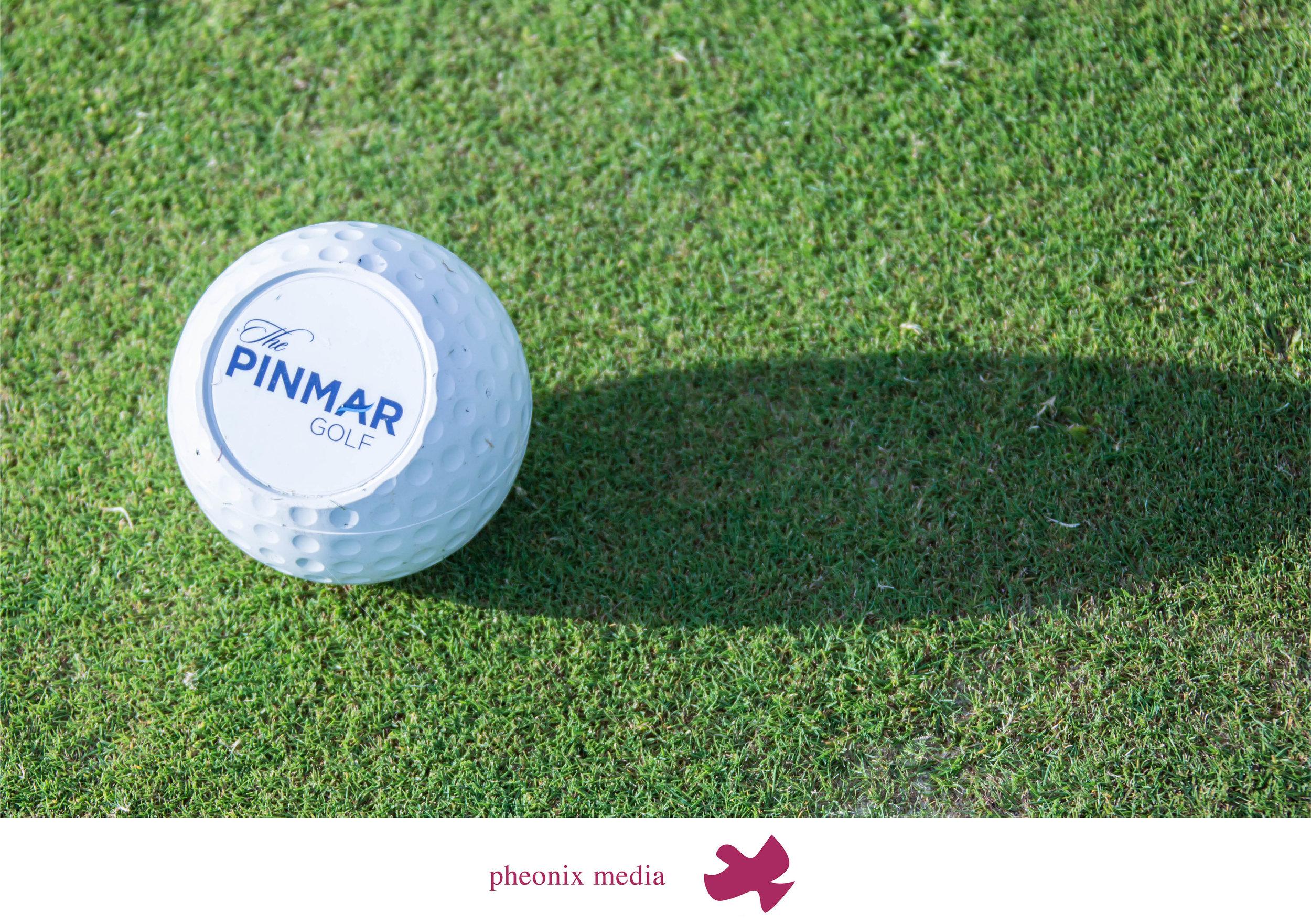 pheonix media pinmar2.jpg
