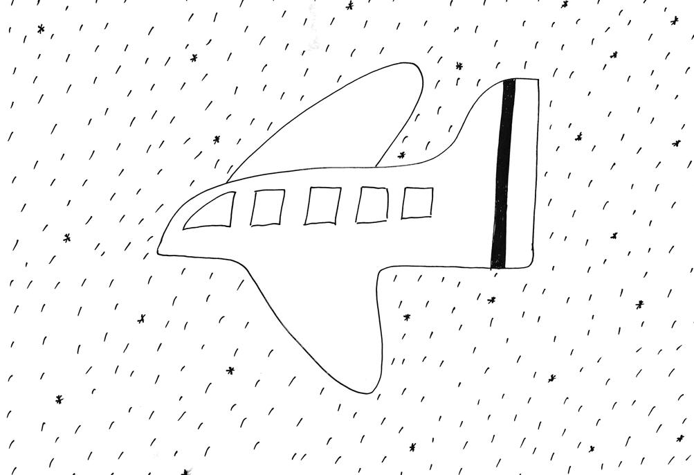 transport-fly.jpg