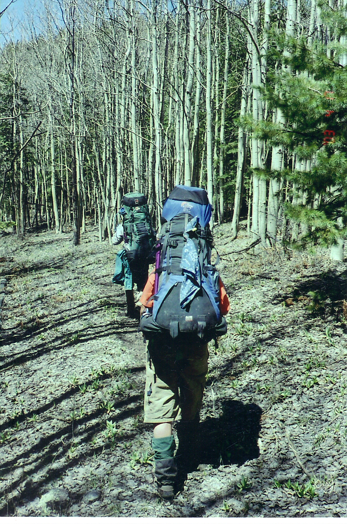 Jaclyn Backpacking in the Gila Wilderness, New Mexico