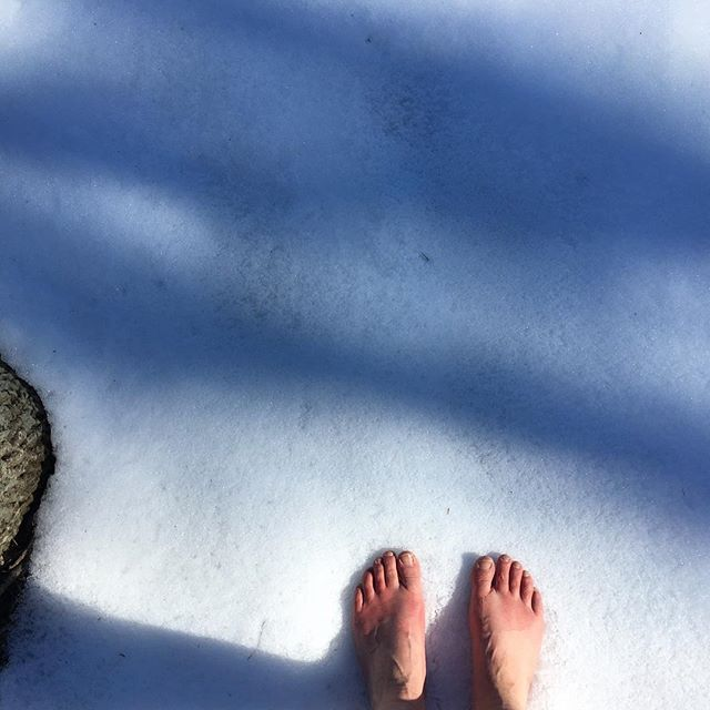 Saying goodbye to the cool snow crystals beneath my feet. My grounding practice changes with the seasons. #wildinspirations #earthingwithjaclyn #goodbyewinter #mainewinter #grounding #earthing #realenergywork #shokaimartialarts #dailypractice #spiritualpractice #earthconnection #lymesurvivor #lymeremission