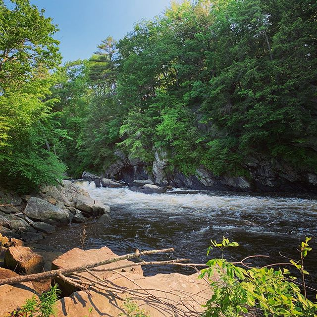 The rivers of change are flowing ~ Happy Summer! - #wildinspirations #maine #lymesurvivor #mainerivers #onmyrun #getoutside