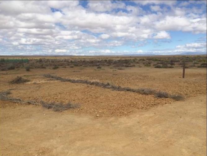 Figure 2: Site rehabilitation post project, Ceres