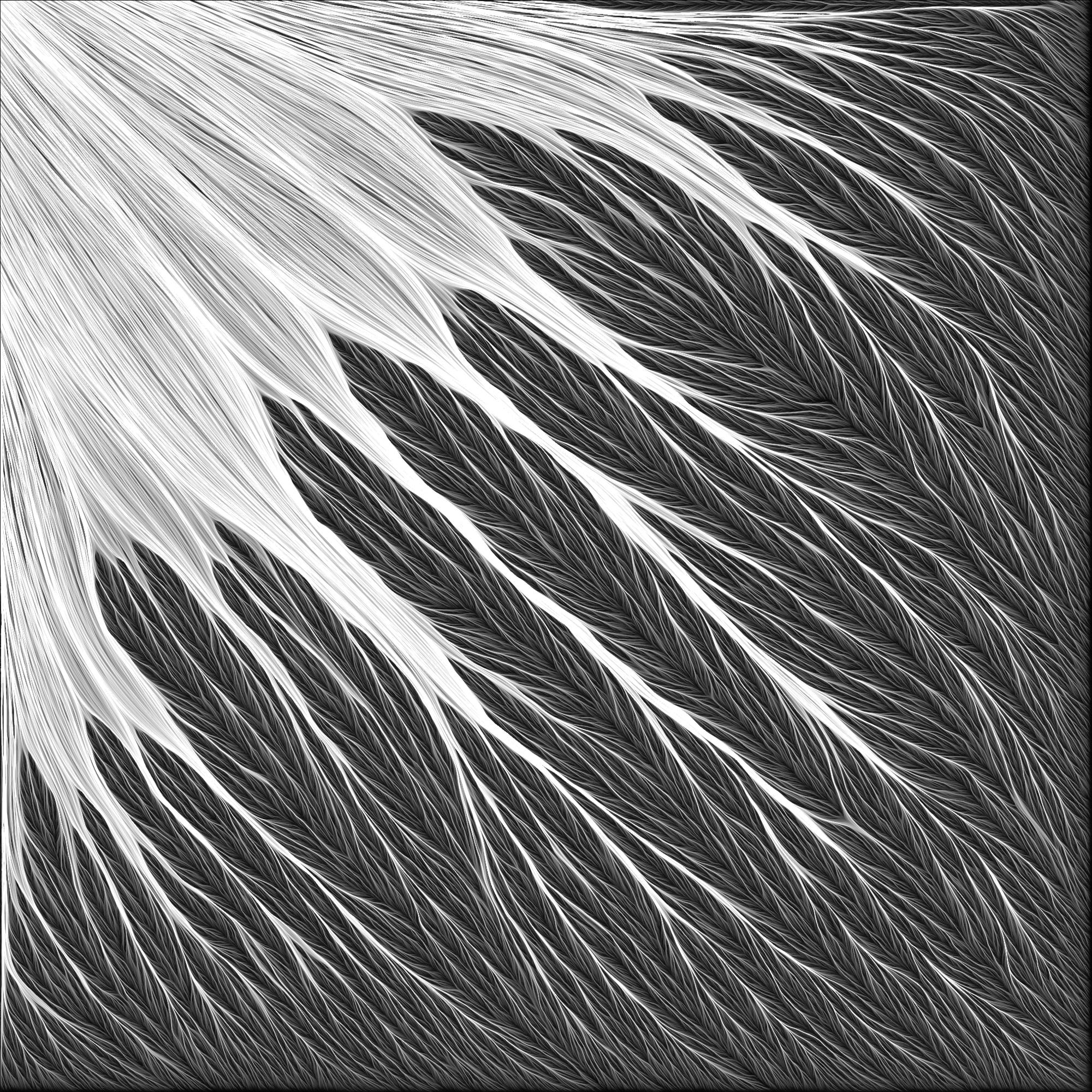 Retina-BM-001.jpg