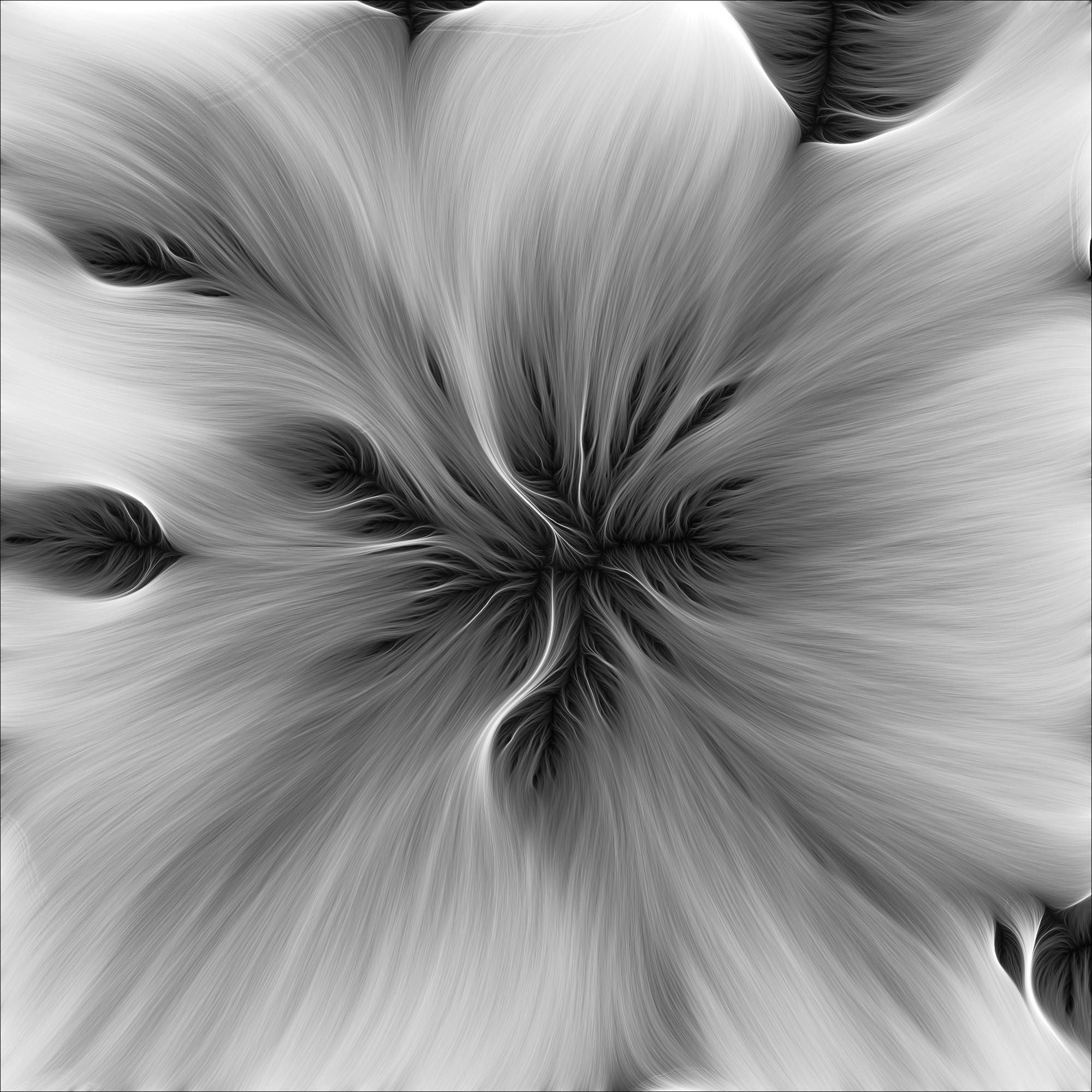 Retina-BM-029.jpg