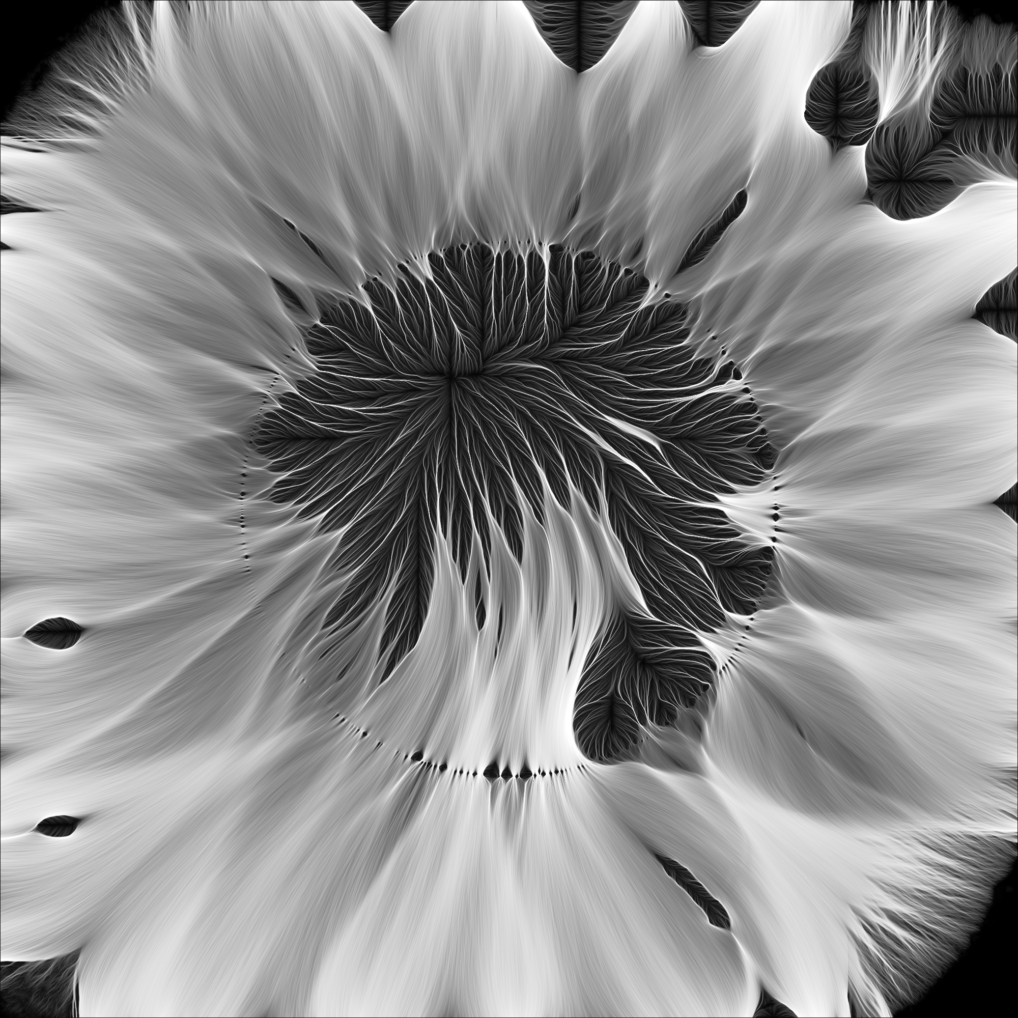 Retina-BM-056.jpg