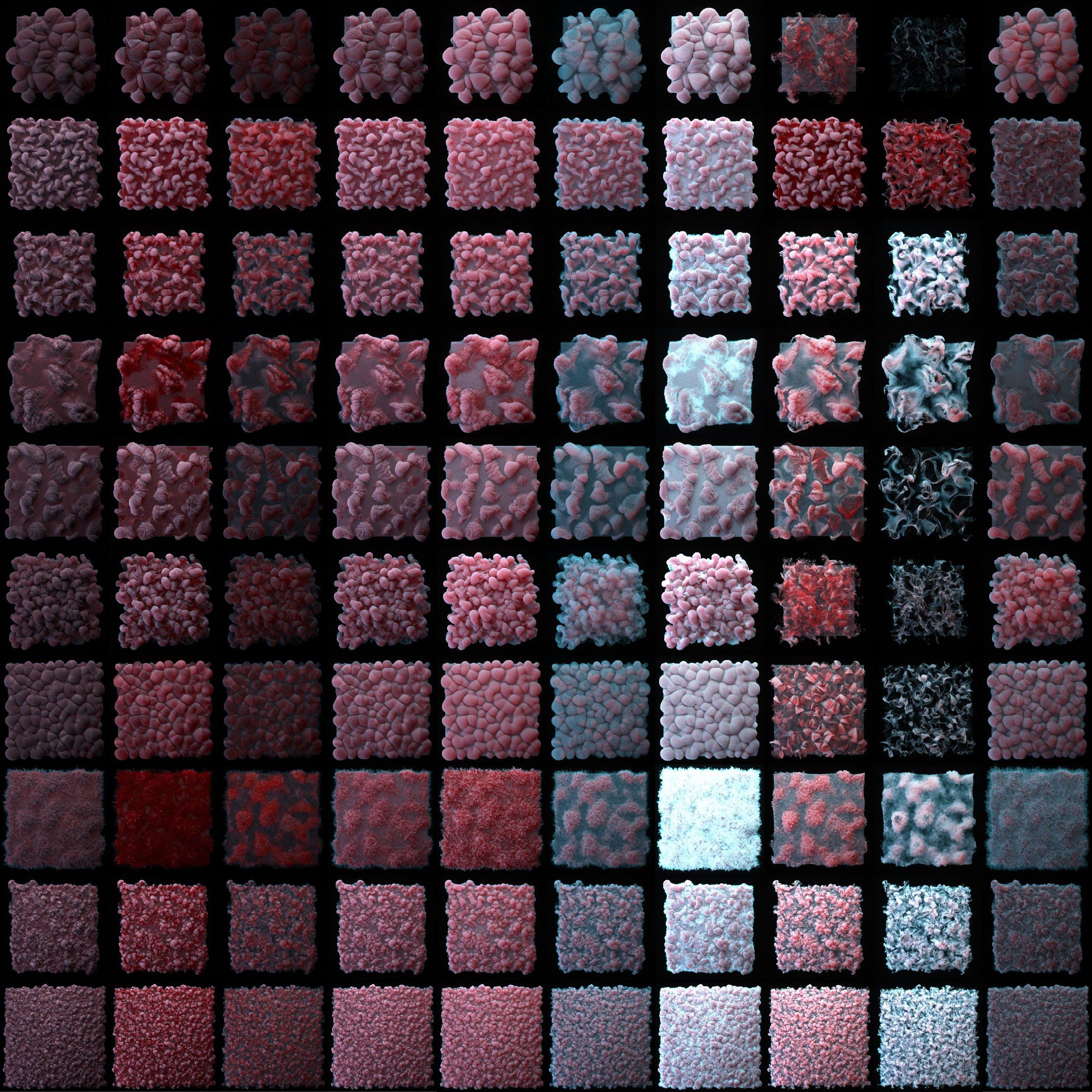 VDB - Frosty Fungus Thumbs.jpg