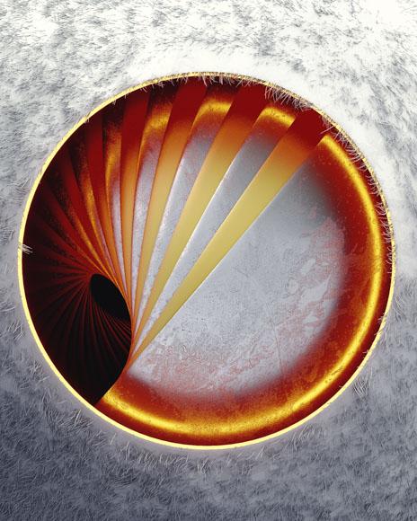 [12-08-17] - Nest.jpg