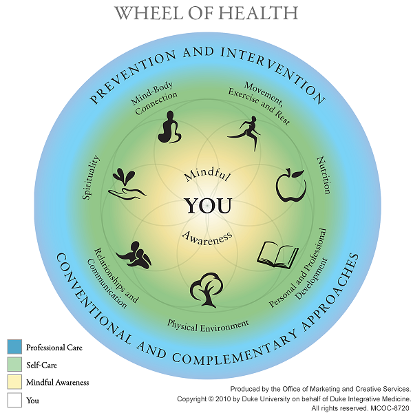 wheel of health.png