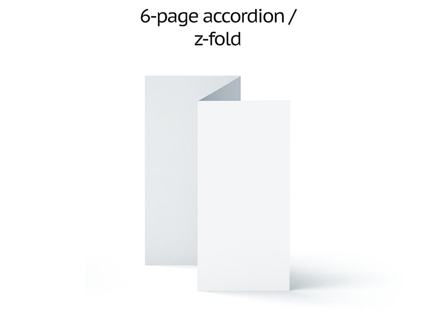 6 page accordion z fold.jpg