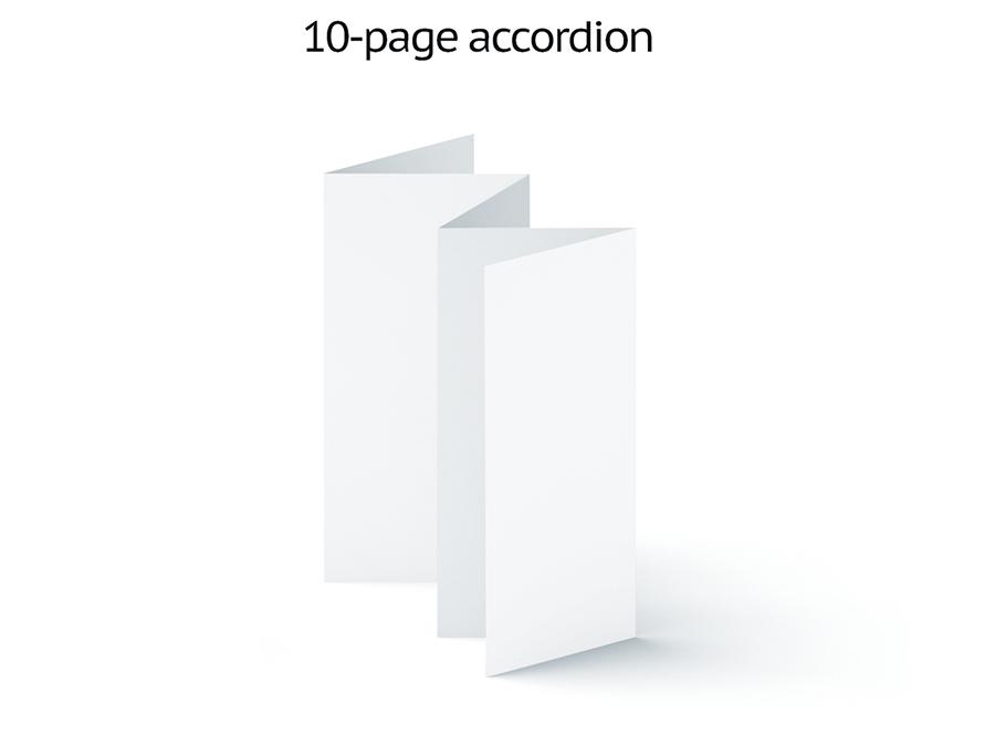 10 page accordion.jpg