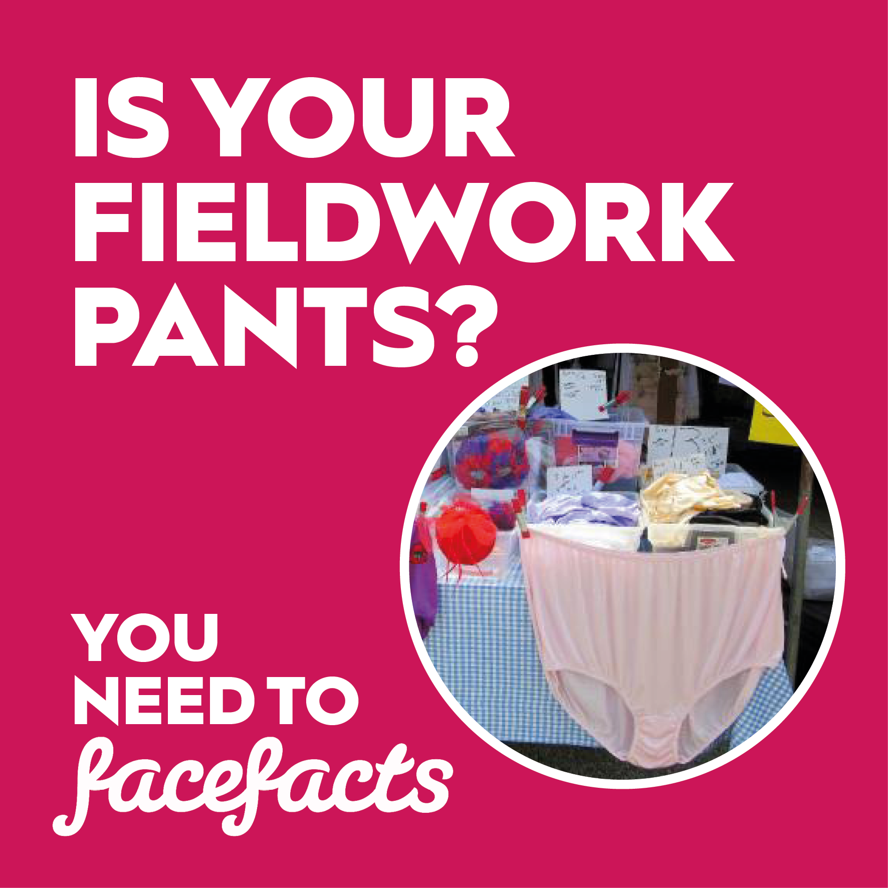 Face Facts Fieldwork Research Pants.png
