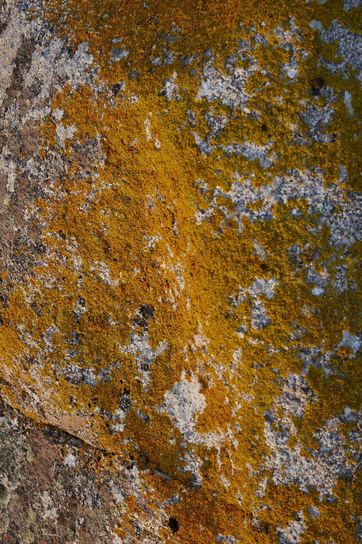 151103_Connemara_Ireland_915.jpg