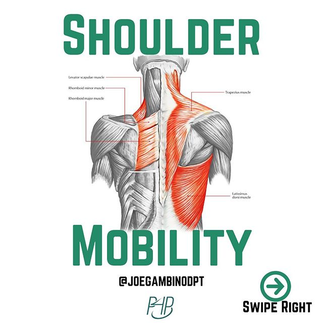 Here are 3 great options to keep your shoulders moving and feeling well!  1) Shoulder Capsular CARs - these are great for controlling your full range of motion of shoulder internal and external rotation.  2. Scapular CARs in shoulder extension.  This is great for creating disassociation between the scapula and humerus.  This is a must needed skill for shoulder health that many struggle with.  Video 3 is one of my all-time favs, Swimmer Hovers. This takes your shoulders through every range of motion imaginable.  Try these out, and if you're interested in learning more, DM me for more information on this Saturday's Kinstretch Class.  The class is at @ironlionperformance in Astoria, Queens.  See you there!  #parfourperformance @parfourperformance #joetalksshoulders