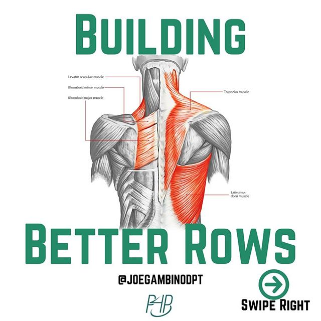 Looking to build a better row technique?  Isometrics are amazing for building better awareness, technique, and positional strength.  In this example I am demonstrating an iso-hold with 2-Point Rows.  This same principle can be applied to any exercise known to man.  Questions? Drop em below.  Interested in working with me? Head to the link in my bio for more information. . . #parfourperformance @parfourperformance #joetalksrows