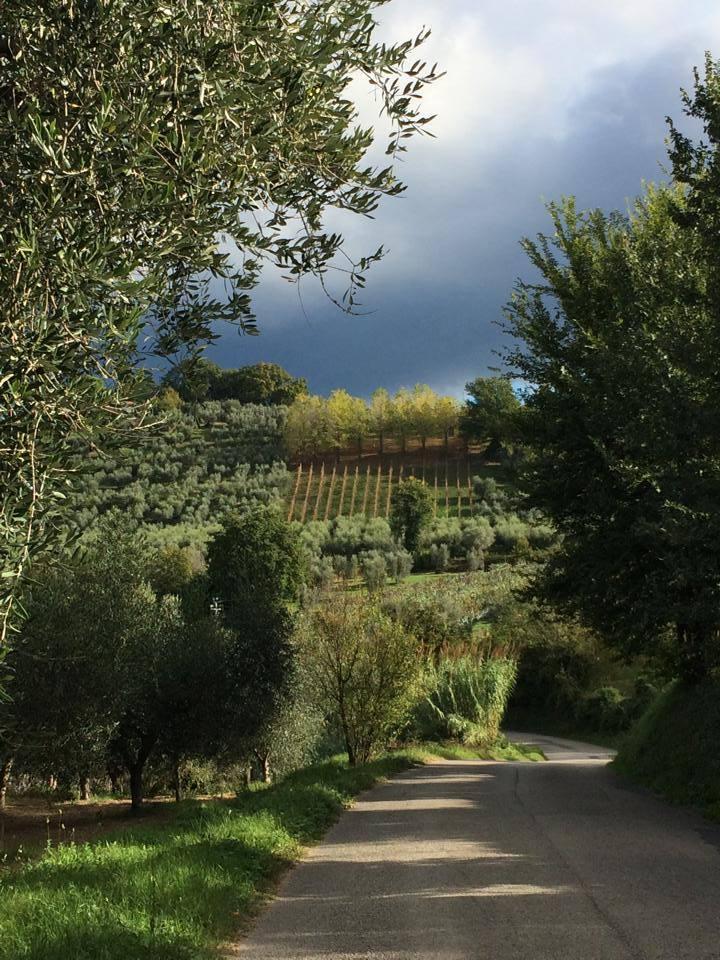 Experience Sabina, Italy!