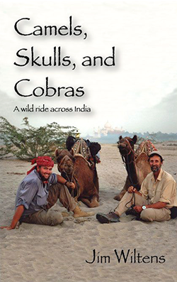 Camels, Skulls, and Cobras:  A wild ride across India  $14.95 Paperback, 270 pages