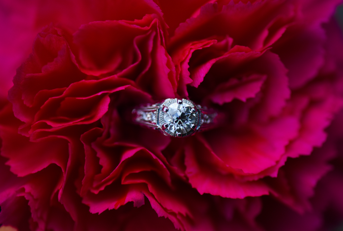 hilary_brian_engagement_middletown_nursery_west_tisbury_ring-7075.jpg