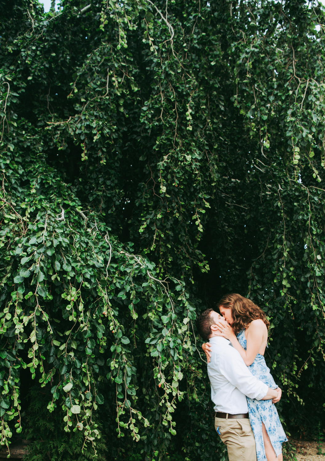 hilary_brian_engagement_middletown_nursery_west_tisbury-3760.jpg