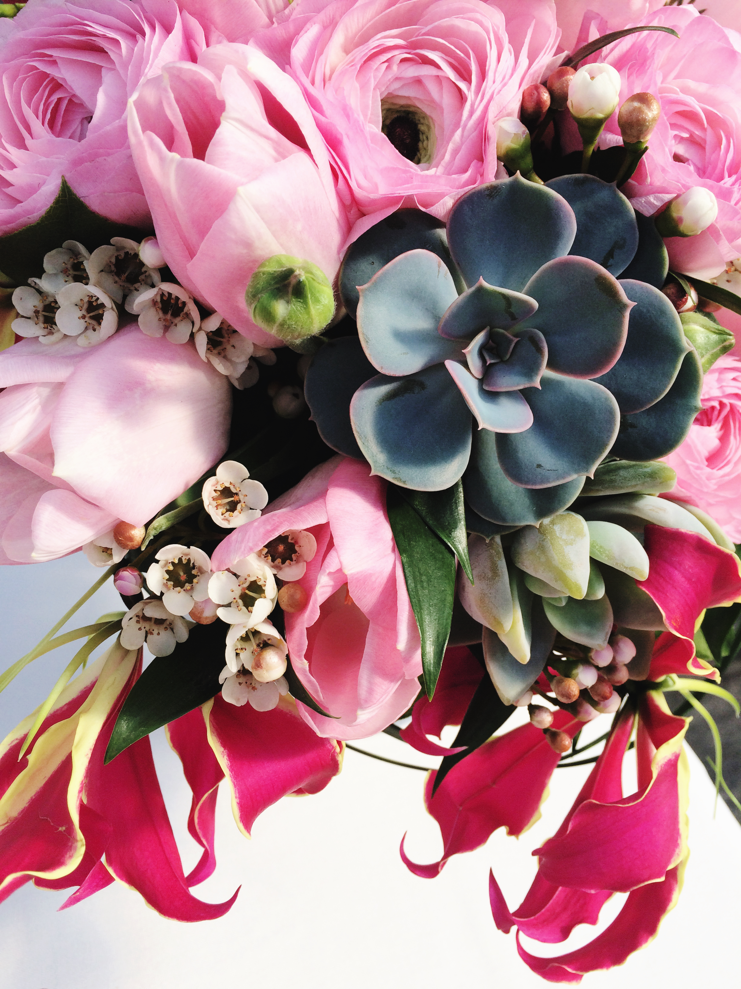 LaFabere loves succulents! lafabere.com/blog