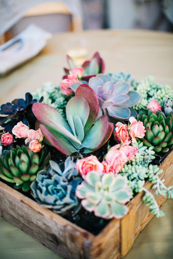 Succulents at weddings @ LaFabere.com/blog