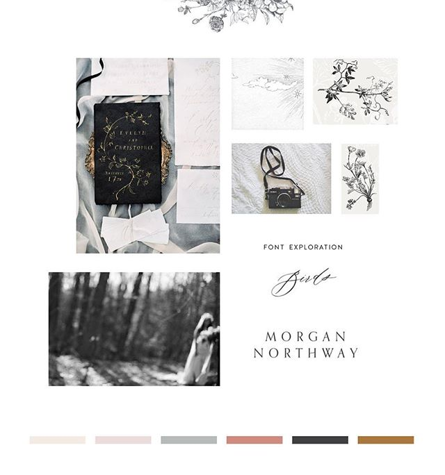 Moody mood boards are my favourite. ✨ #inthestudiolately #graphicdesigner #multipassionate