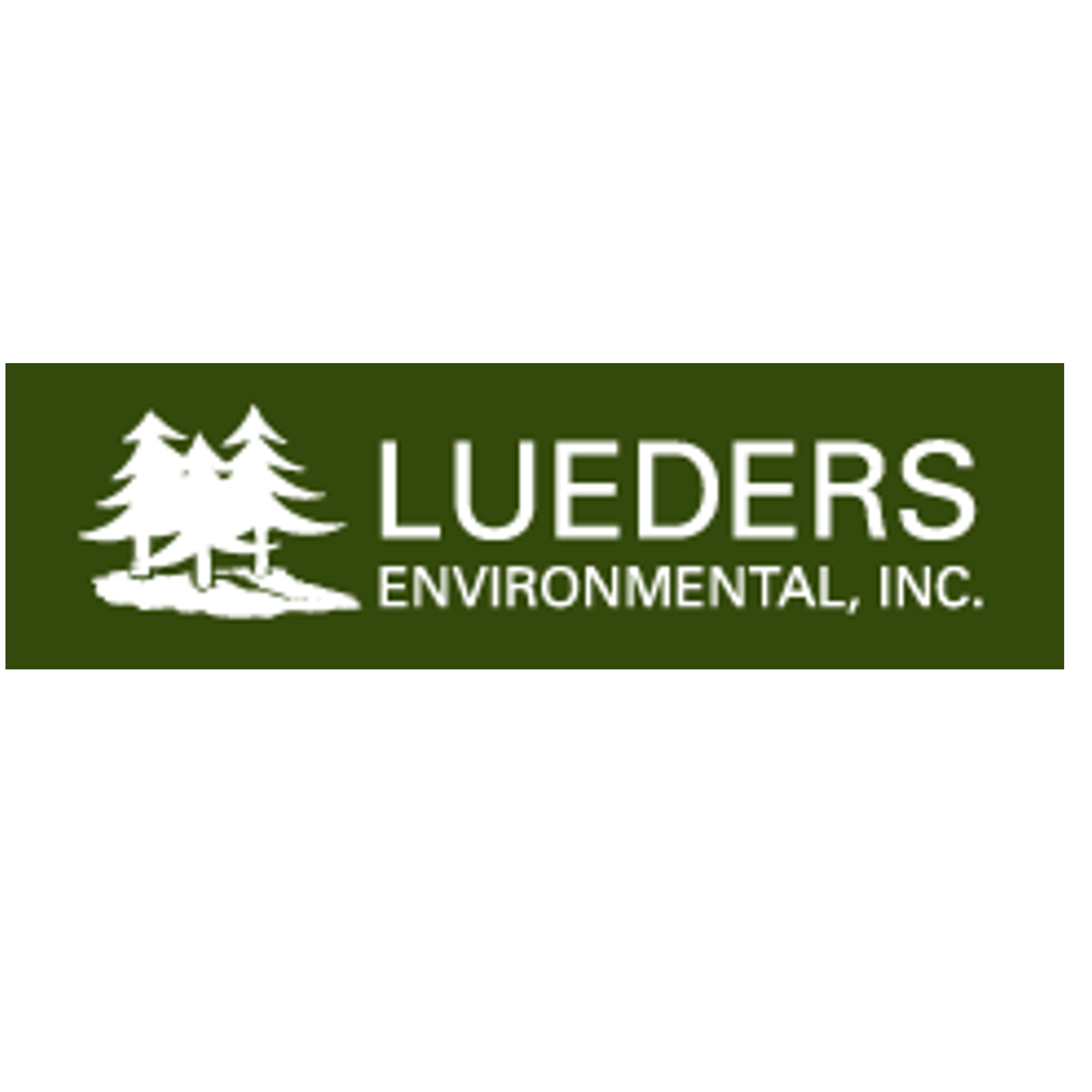 Lueders Environmental
