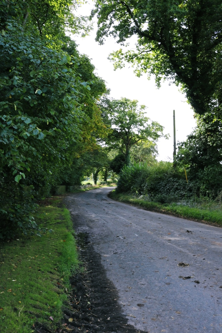 The road to the Granary