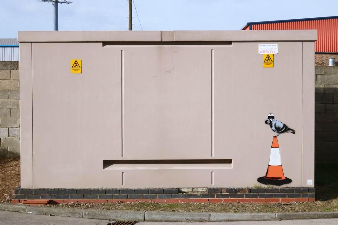 Stockton: Grey Pigeon Down