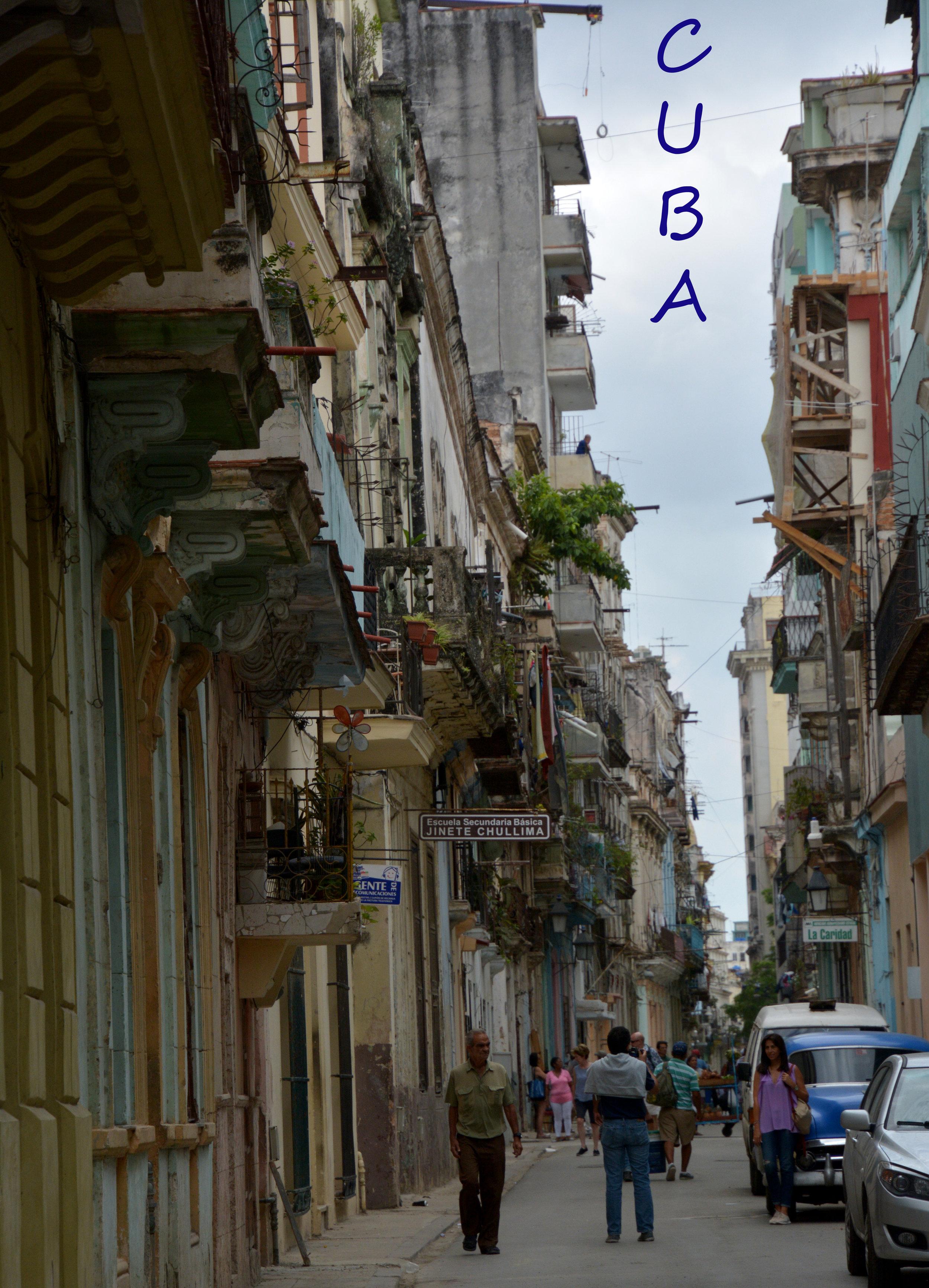 Best street Havana Cuba Buttonwood  DSC_1217.jpg