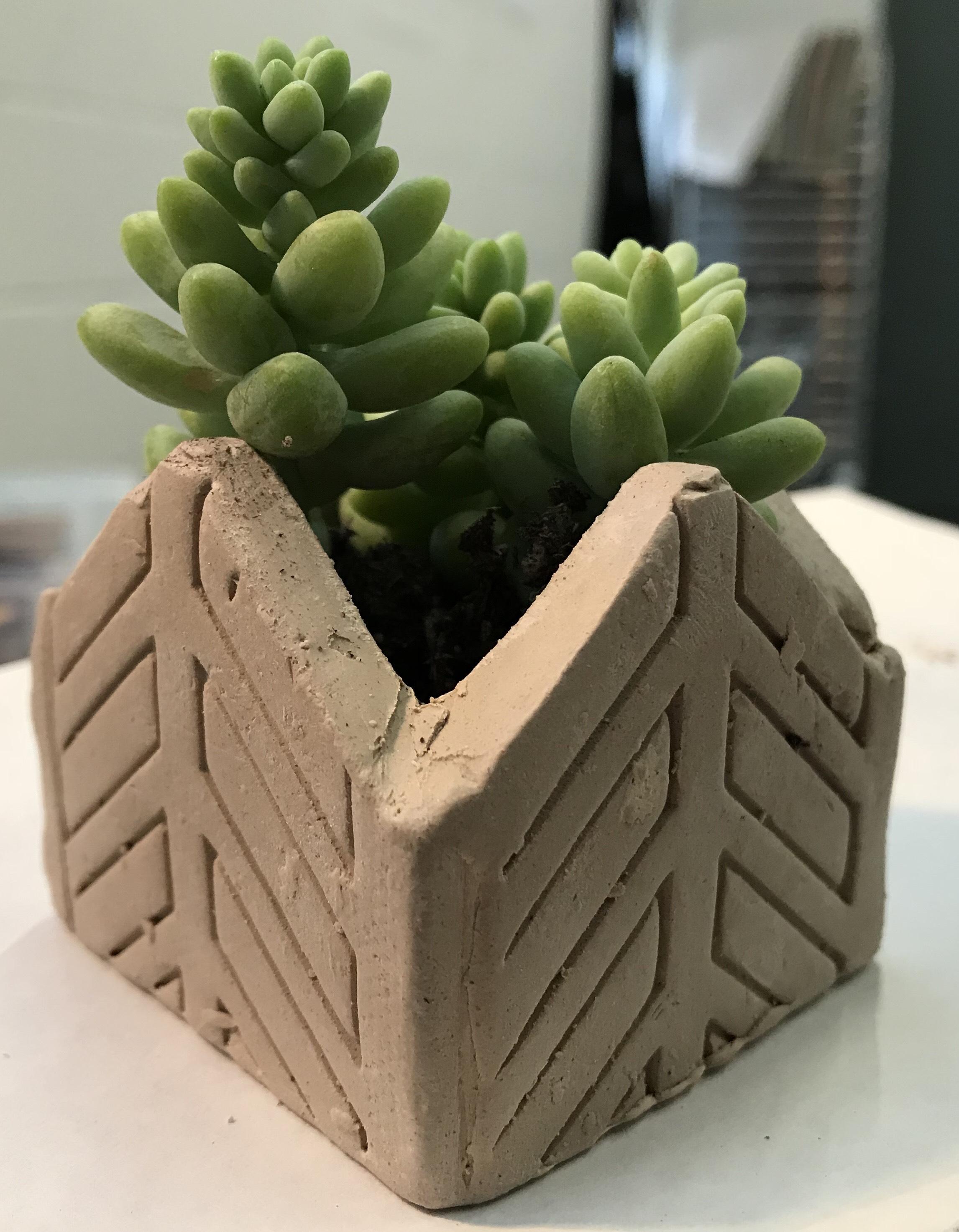 Make Your Own Succulent Planter Workshop Interurban Arthouse