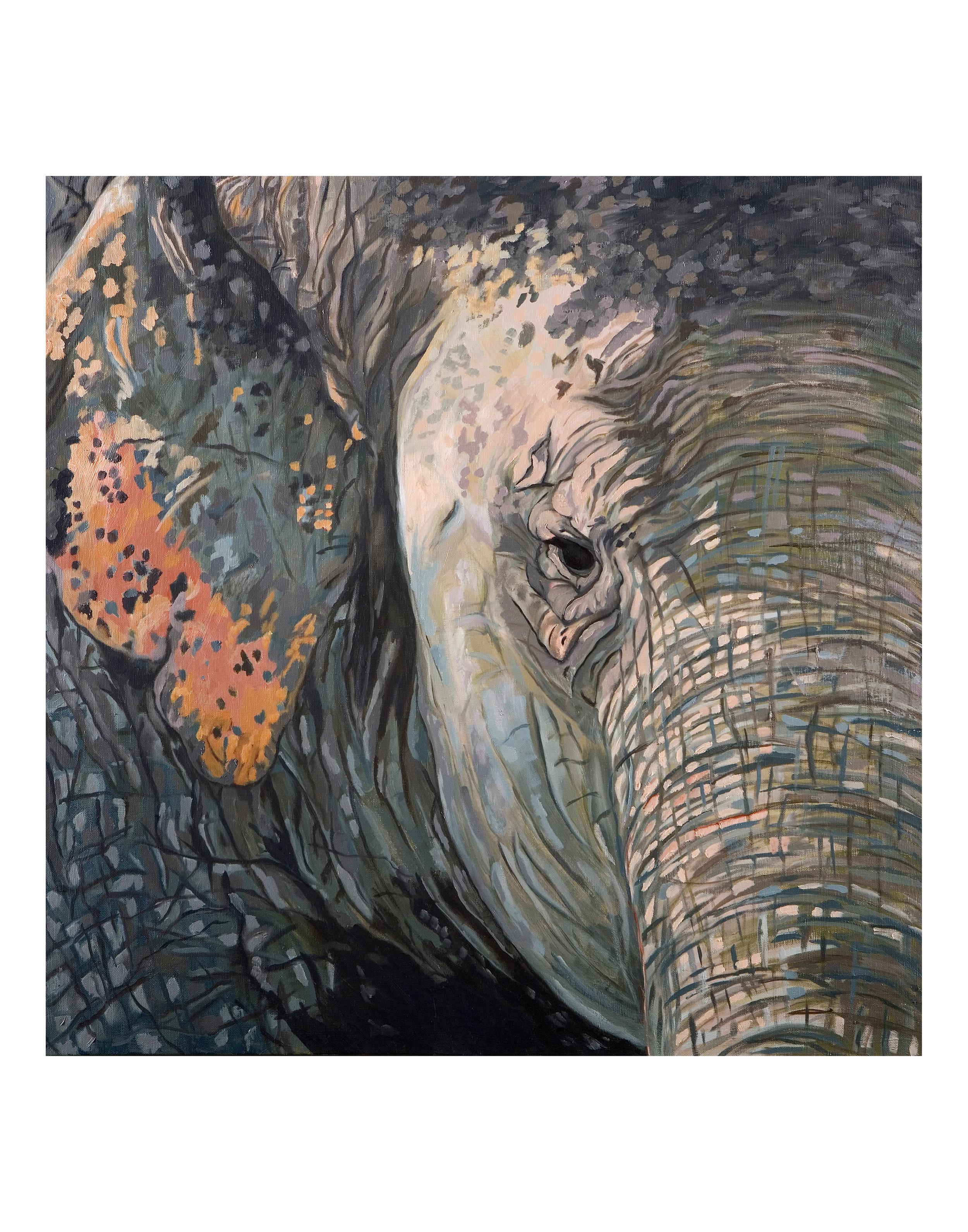 Bombay Elephant