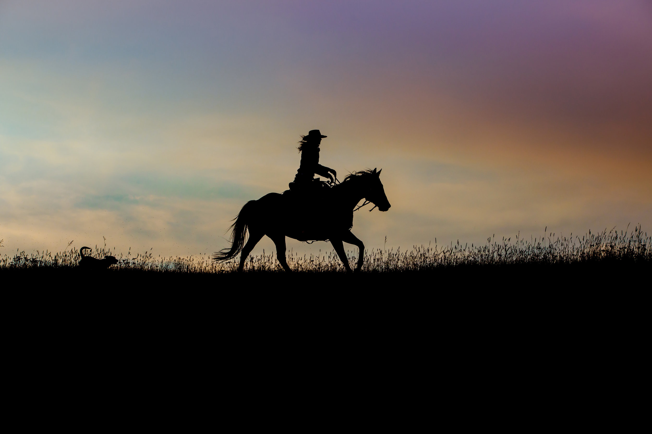 Evening Cowgirl