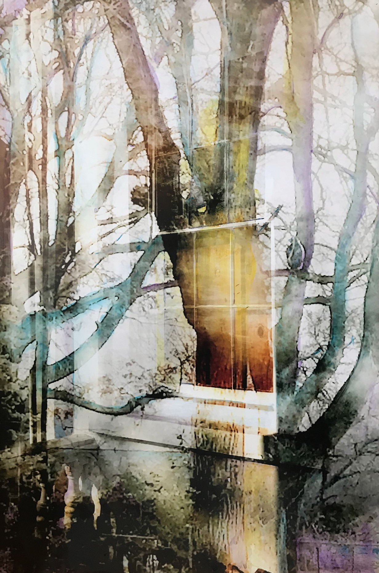 Visions and portals - Kathryn Barker.jpg