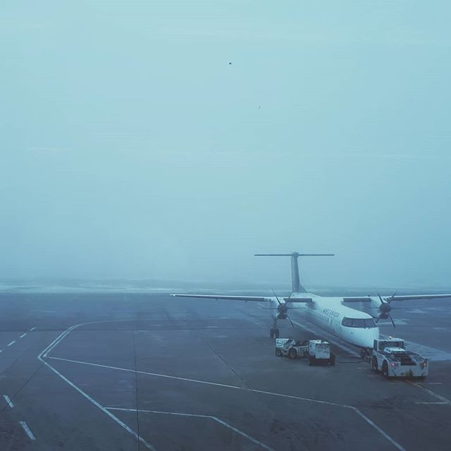You can always count on the weather here in NL . . . #fog #foggy #nl #stjohns #airport #flight #delayed