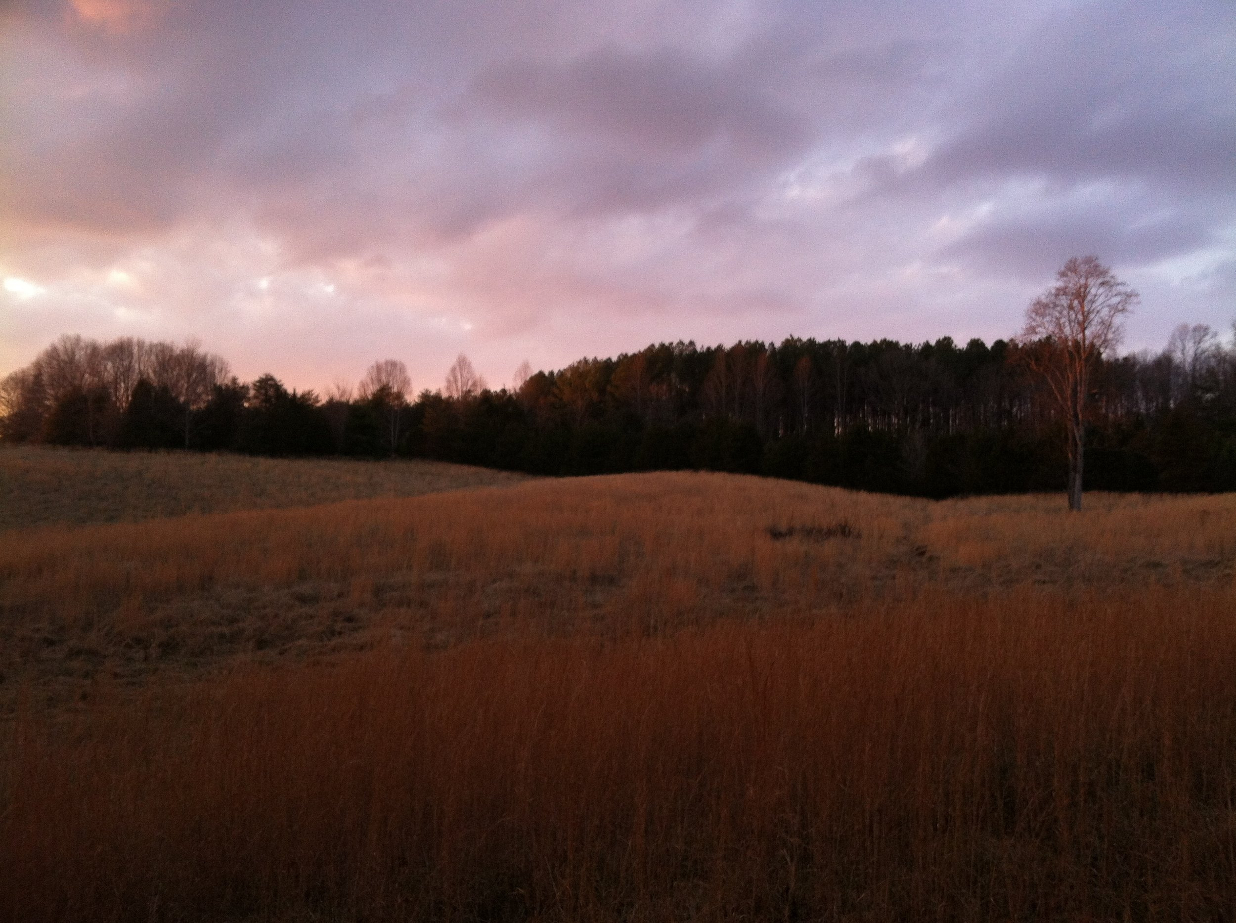 Atelier is 5 acres in a broader 60. Sunset walks around the larger acreage are very nice for farm-plan dreaming.