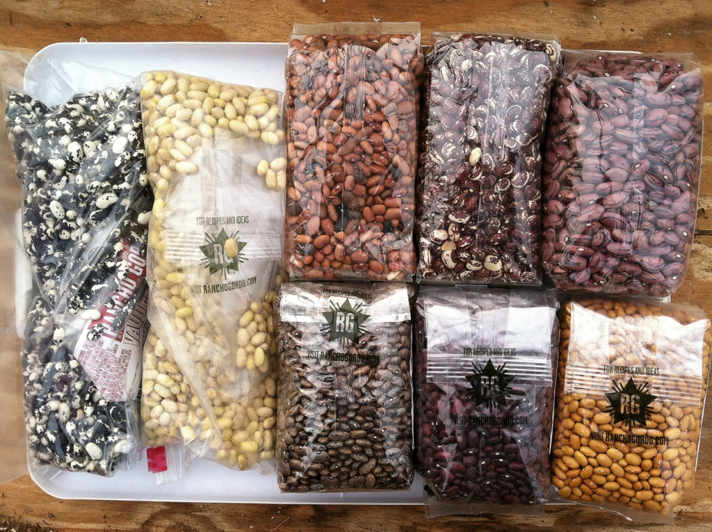 """A few of the 2019 beans. """"Success is the ability to go from one failure to another with no loss of enthusiasm."""" There's more to it than that, but the quote came to mind as I unpacked some of the 2019 bean varieties for trial. I have 2018 videos (plural) where I walked the 25 varieties on trial and commented on their height, their color, their pod formation, and their overall health. They were really looking pretty good … before they weren't, when the rains continued and the rot came on. But, gee, I sure am excited about the 2019 beans."""