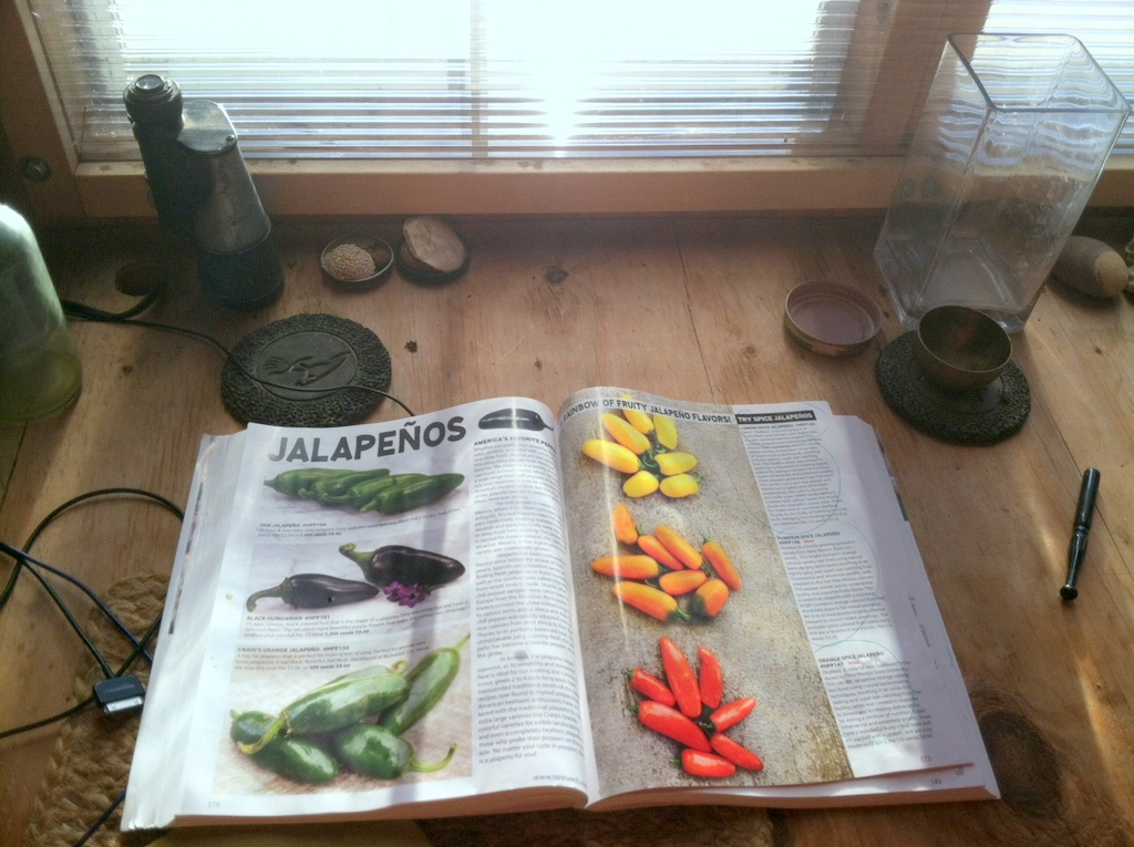 """We know it's the end of Summer when the twin-wall polycarbonate covers the Summer Kitchen windows, and the Baker Creek catalog comes in the mail! You asked for less hot hot peppers, so I'm adding a few to the 2019 collection. Here's to a rainbow of jalapenos for next year.  As an aside, the half-bi-nocular in the upper left was my grandfather's, which he used to watch boats and geese on his backyard corner of the Narragansett Bay, Rhode Island. My nephew saw it this summer, learned of its provenance, and asked with all sincerity: """"Did my great-grandfather have one eye?"""""""