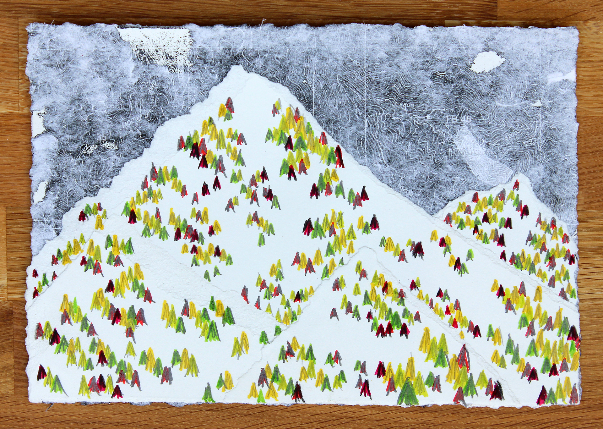 "Landforms - p22c    2012 cut paper, toner, pigment & graphite on paper 11 1/8"" x 14 5/8"""