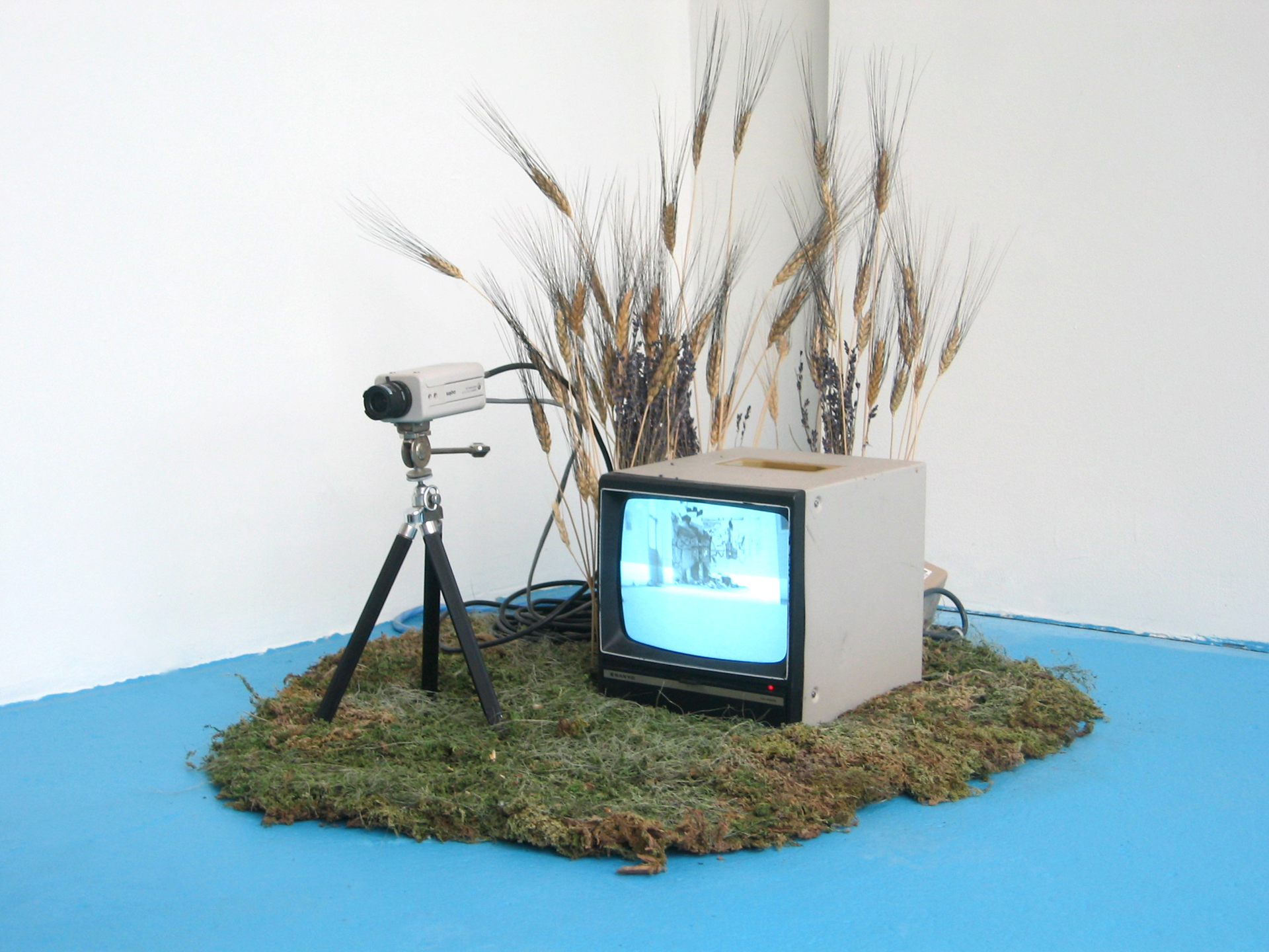 (installation view)    Aquatic Shadowing Surveyance (A.S.S.)    2005   surveillance equipment, man-made island, simulated body of water   dimensions vary