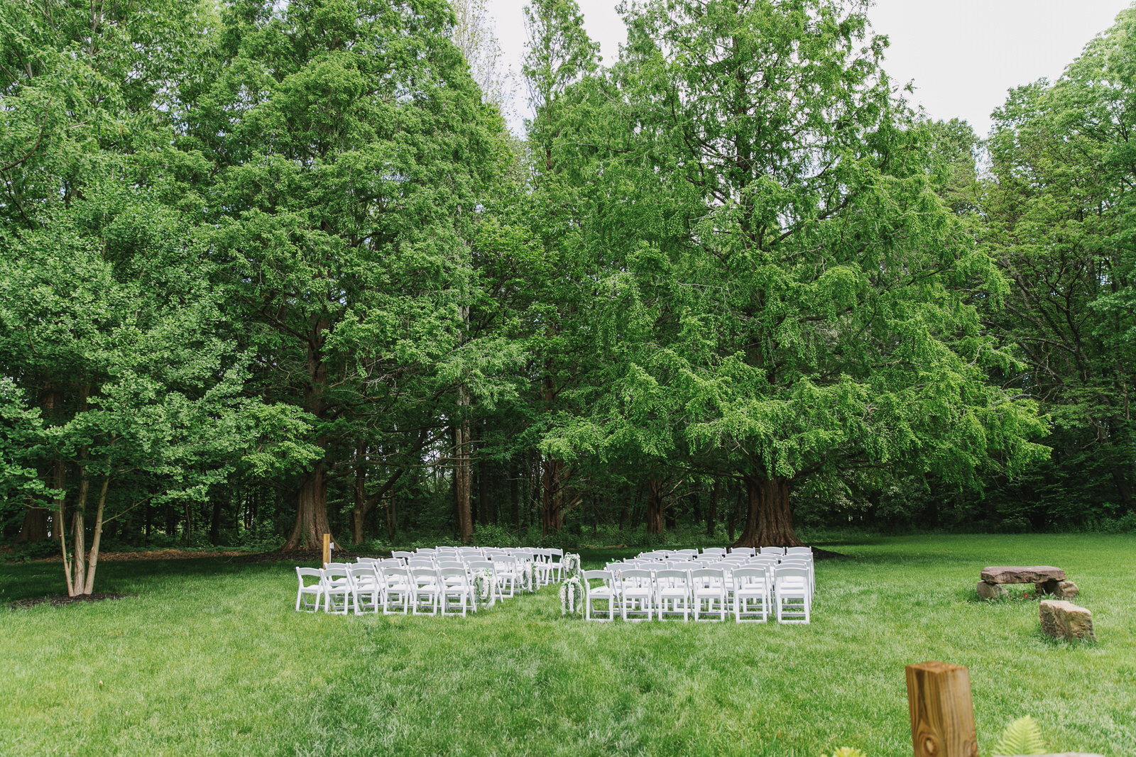 Wooded Ceremony Site - Get married among these lush giant trees!