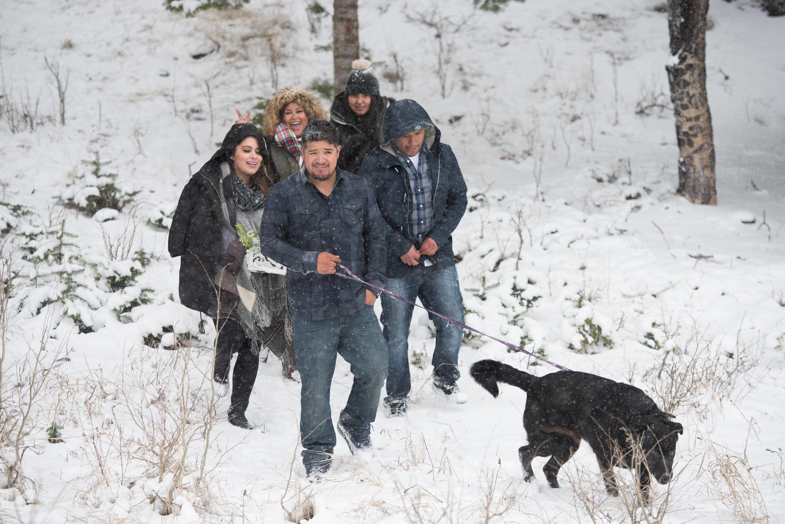 estes park rocky mountain national park engagement