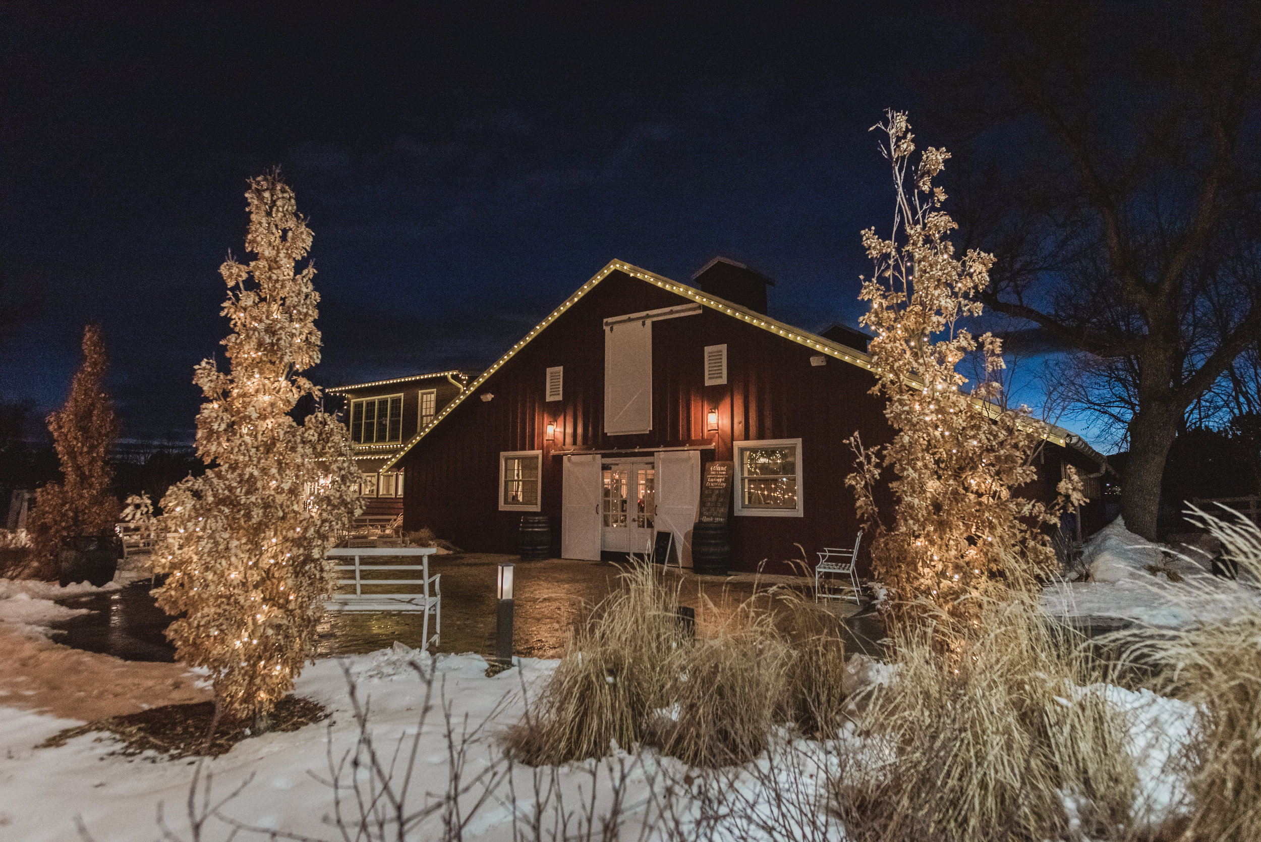 raccoon creek winter wedding photography boulder colorado mountains